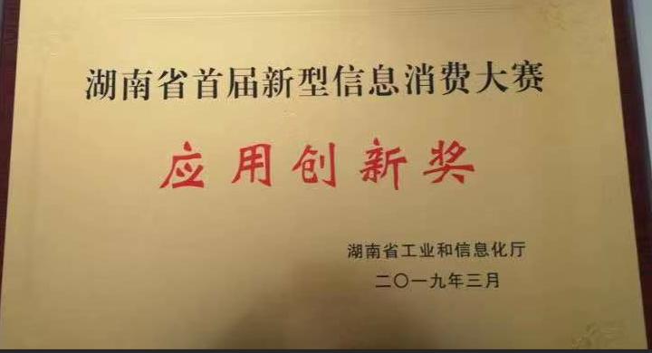 """我司荣获湖南省首届新型信息消费大赛总决赛""""应用创新奖"""""""